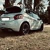 Ma petite lionne by Jchris in Peugeot 208 GTi - 30 Th